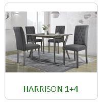 HARRISON 1+4